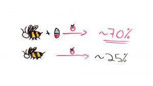 Honeybees are effected by antibiotics
